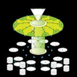 3dmor Customer Org Chart